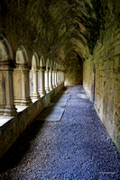 Cloister Light